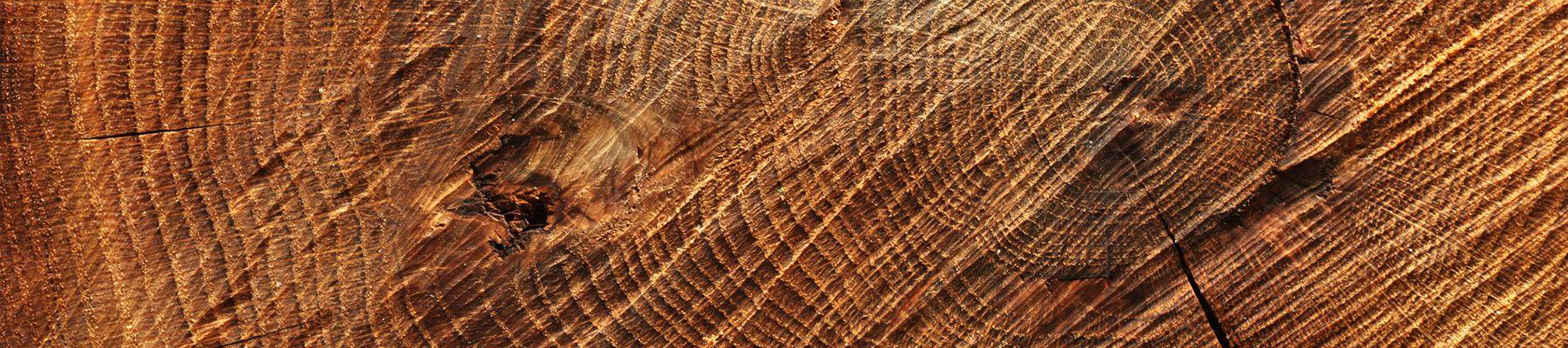 Wybarwienia drewniane